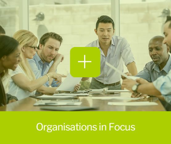 Organisations in focus